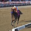 McKinzie wins the 2019 Whitney Stakes at Saratoga<br /> Coglianese Photos/Chelsea Durand