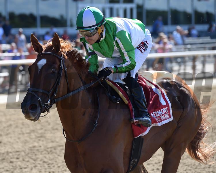 Mr. Buff wins the Saginaw Stakes Sunday, June 30, 2019 at Belmont Park. Photo: Coglianese Photos/Joe Labozzetta