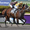 Diamond Oops wins the 2019 Smile Sprint Stakes at Gulfstream Park<br /> Coglianese Photos