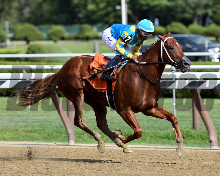 Gozilla wins a maiden special weight Saturday, August 10, 2019 at Saratoga. Photo: Coglianese Photos