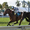 Santa Monica wins the 2019 Orchid Stakes at Gulfstream Park<br /> Coglianese Photos/Lauren KIng
