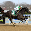 No Deal wins the 2019 Xtra Heat Stakes at Aqueduct<br /> Coglianese Photos/Susie Raisher