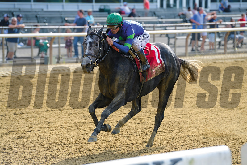Royal Charlotte, Javier Castellano, Victory Ride Stakes, G3, Belmont Park, July, 5, 2019
