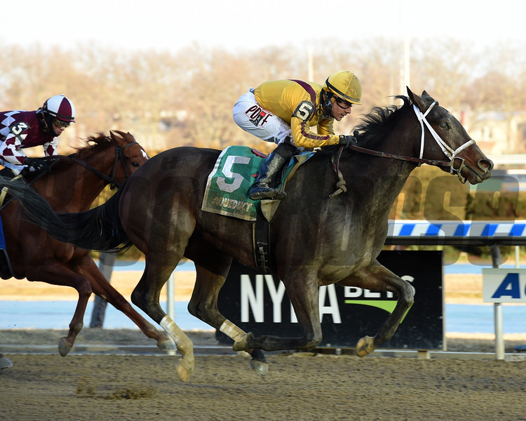 Dawn the Destroyer wins the 2019 Interborough Stakes at Aqueduct<br /> Coglianese Photos