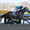 Do Share wins the 2019 Tom Fool at Aqueduct<br /> Coglianese Photos/Elsa Lorieul