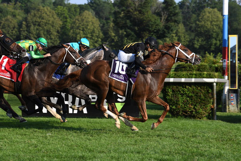 Channel Cat wins 2019 Bowling Green Stakes at Saratoga. Photo: Coglianese Photos/Susie Raisher