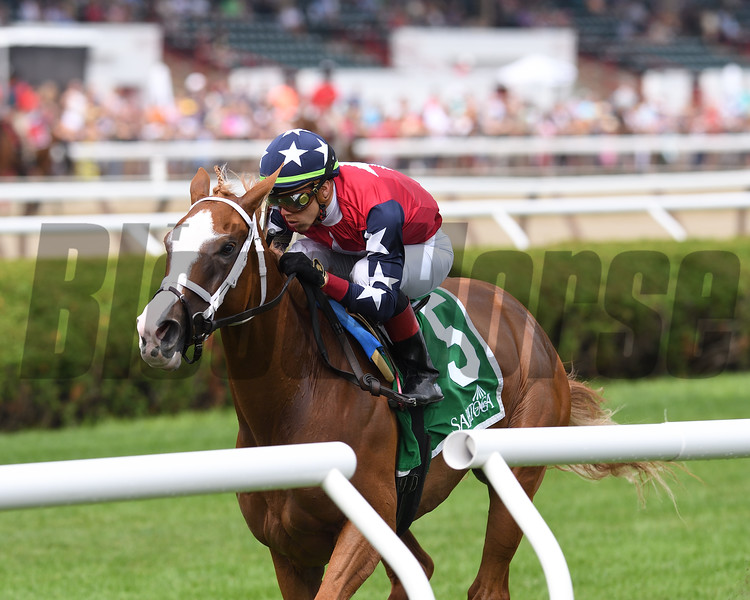 Kid Is Frosty wins the 2019 New York Stallion Series Stakes at Saratoga<br /> Coglianese Photos/Chelsea Durand