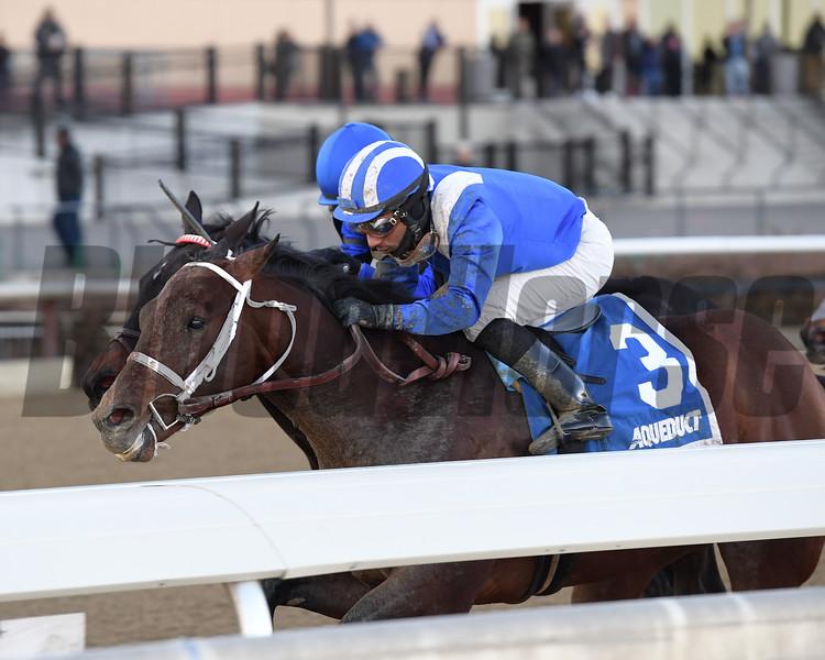 Haikal wins the 2019 Jimmy Winkfield Stakes at Aqueduct<br /> Coglianese Photos/Joe Labozzetta