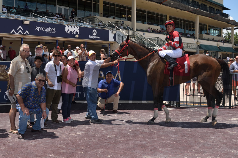 Stay Again wins a maiden claiming race July 27, 2019 at Gulfstream Park. Photo: Coglianese Photos/Lauren King