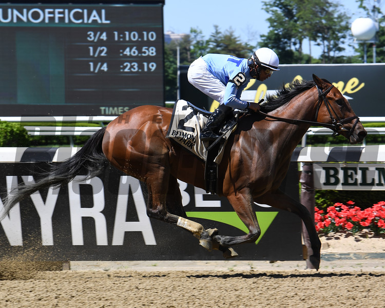 Newly Minted wins the Bouwerie Stakes Monday, May 27, 2019 at Belmont Park. Photo: Coglianese Photos/Susie Raisher