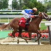 Sneaky Surprise - Maiden Win, Belmont Park, May 9, 2019<br /> Coglianese Photos/Derbe Glass