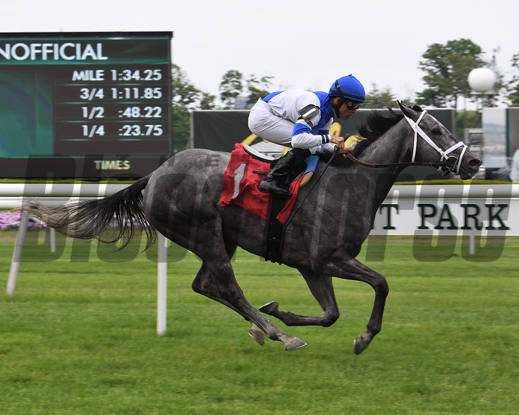 Keota wins 2019 Claiming at Belmont Park<br /> Coglianese Photos
