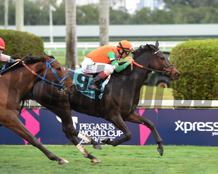 Dolce Lili wins the 2019 South Beach Stakes at Gulfstream Park<br /> Coglianese Photos/Derbe Glass