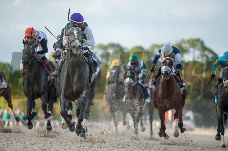 Tacitus. with Jose Ortiz up Wins The Lambholn South Tampa Bay Derby; Billy Mott; @ Tampa Bay Downs in Oldsmar; Fl; March 9 2019; ©JoeDiOrio/Winningimages.biz