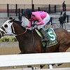 Solid Wager wins the 2019 Toboggan Stakes at Aqueduct<br /> Coglianese Photos/Joe Labozzetta