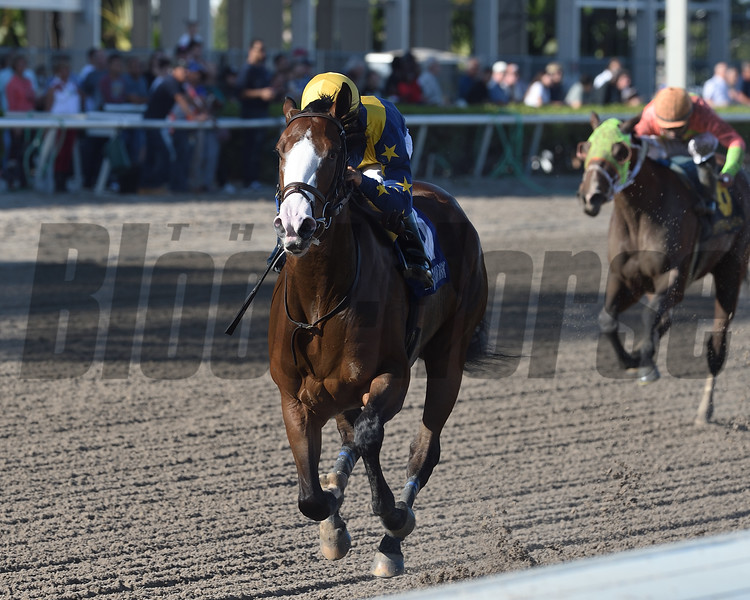 Fancy Dress Party wins the 2019 Glitter Woman Stakes at Gulfstream Park<br /> Coglinanese Photos/Kenny Martin