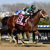 Life's a Parlay wins the 2019 Excelsior Stakes at Aqueduct.<br /> Coglianese Photos