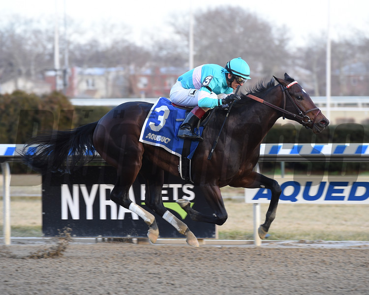Mind Control wins the 2019 Jerome Stakes at Aqueduct<br /> Coglianese Photos/Susie Raisher
