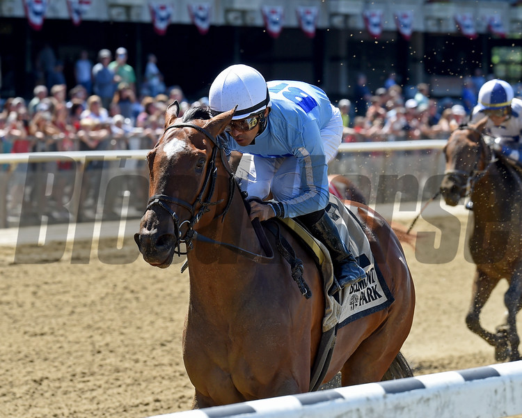 Newly Minted wins the Bouwerie Stakes Monday, May 27, 2019 at Belmont Park. Photo: Coglianese Photos/Chelsea Durand