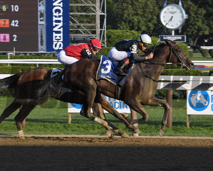 Perfect Alibi wins the 2019 Adirondack Stakes at Saratoga. Photo: Coglianese Photos/Susie Raisher