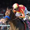 McKinzie wins the 2019 Whitney Stakes at Saratoga<br /> Coglianese Photos/Adam Mooshian
