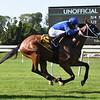 Rinaldi wins the New York Stallion Stakes Sunday, June 23, 2019 at Belmont Park. Photo: Coglianese Photos/Susie Raisher
