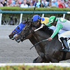 Jeltrin (outside) wins the 2019 Davona Dale Stakes at Gulfstream Park<br /> Coglianese Photos/Lauren KIng