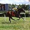 Decorated Invader - Maiden Win, Saratoga, August 10, 2019<br /> Coglianese Photos