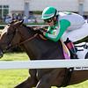 Onyx wins the 2019 Sharp Susan Stakes at Gulfstream Park. Photo: Coglianese Photos/Nicole Thomas
