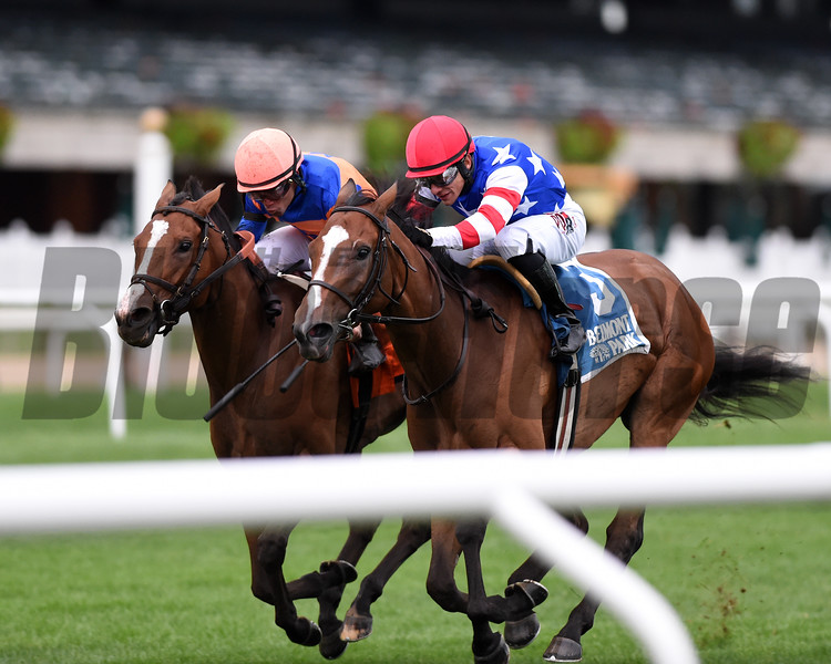 Turf War wins the 2019 Christiecat Stakes at Belmont Park<br /> Coglianese Photos/Chelsea Durand