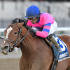 Holiday Disguise wins the 2019 Broadway Stakes at Aqueduct<br /> Coglianese Photos/Chelsea Durand