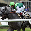 Significant Form wins the 2019 Intercontinental Stakes at Belmont Park<br /> Coglianese Photos/Elsa Lorieul