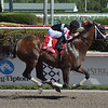 Recruiting Ready wins the 2019 Gulfstream Park Sprint<br /> Coglianese Photos/Leslie Martin