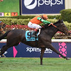 Dolce Lili wins the 2019 South Beach Stakes at Gulfstream Park<br /> Coglianese Photos