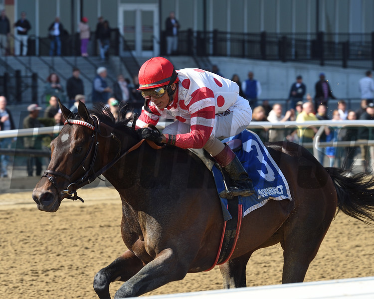 Mind Control wins the 2019 Bay Shore Stakes at Aqueduct<br /> Coglianese Photos/Chelsea Durand