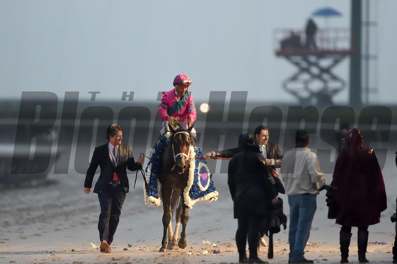 City of Light wins the 2019 Pegasus World Cup at Gulfstream Park<br /> Coglianese Photos/Tim Sullivan