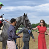 Significant Form wins the 2019 Intercontinental Stakes at Belmont Park<br /> Coglianese Photos/Joe Labozzetta