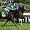 Lucullan wins the 2019 Lure Stakes at Saratoga <br /> Coglianese Photos/Viola Jasko