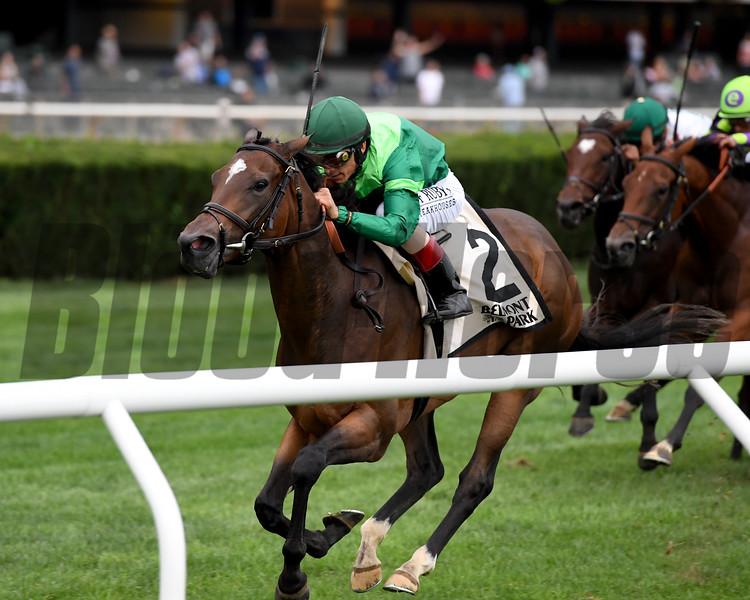 Blowout wins the 2019 Pebbles Stakes at Belmont Park<br /> Coglianese Photos/Joe Labozzetta