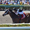 Recruiting Ready wins the 2019 Gulfstream Park Sprint<br /> Coglianese Photos/Lauren King