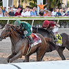 Code of Honor wins the 2019 Fountain of Youth Stakes at Gulfstream Park<br /> Coglianese Photos/Lauren King