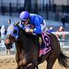 Daria's Angel wins the 2019 Sis City Stakes at Aqueduct<br /> Coglianese Photos/Elsa Lorieul