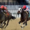 Archumybaby wins the 2019 Videogenic Stakes at Aqueduct<br /> Coglianese Photos/Elsa Lorieul
