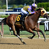 Carrera Cat wins the 2019 Union Avenue Stakes<br /> Coglianese Photos