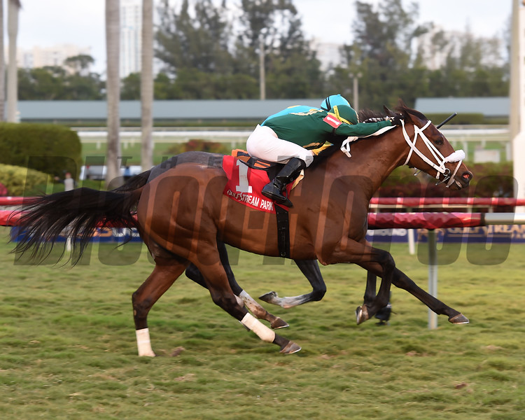 Speed Franco wins the 2018 Dania Beach Stakes<br /> Coglianese Photos/Leslie Martin