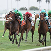 Si Que Es Buena wins the 2019 La Prevoyante Stakes at Gulfstream Park<br /> Coglianese Photos/Adam Mooshian