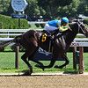 Zyramid - Maiden Win, Saratoga, July 13, 2019<br /> Coglianese Photos