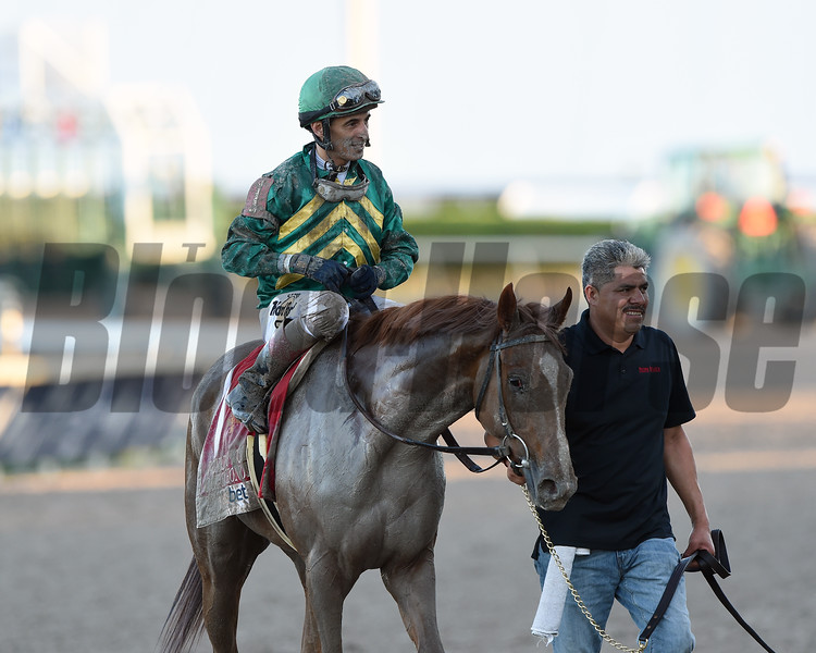 Code of Honor wins the 2019 Fountain of Youth Stakes at Gulfstream Park<br /> Coglianese Photos/Tim Sullivan