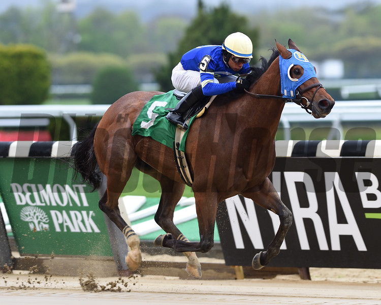 Professor Snape wins the first race at Belmont Park Friday, April 26, 2019. Photo: Coglianese Photos/Chelsea Durand