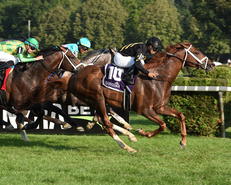 Channel Cat wins 2019 Bowling Green Stakes at Saratoga. Photo: Coglianese Photos